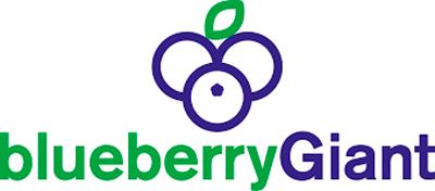 Logo Blueberry Giant